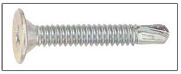 phillips wafer head screw